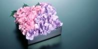 Группа компаний «СтеклоСтиль» поздравляет всех дам с праздником 8 марта!